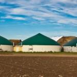 Biogazownie we Frankonii potrzebują coraz wiecej upraw kukurydzy.Tu biogazownia w Mausdorf