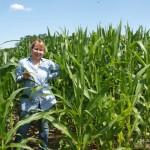 Według Państwa Górskich w tym roku kukurydza zapowiada się dobrze