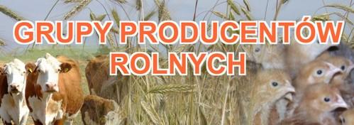 GRUPY-PRODUCENTÓW-ROLNYCH