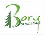 bory-dolnosląskie