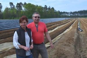 Pańsstwo Dorota i Zenon Tracz na polu ze szparagami