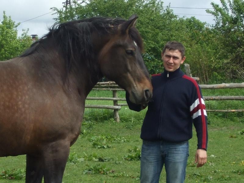 Sosiński Dariusz (800x600)