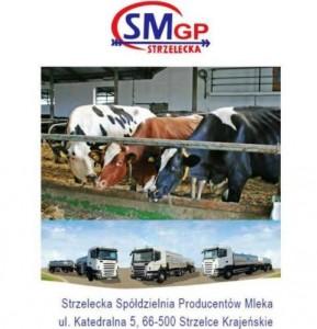 Strzelecka Spółdzielnia Producentów Mleka
